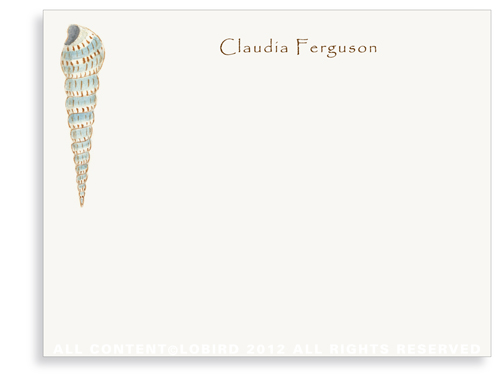 Cone Shell - Flat Note Cards