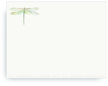 "Dragonfly - Non-Personalized Note Cards (4.25"" X 5.5"")"