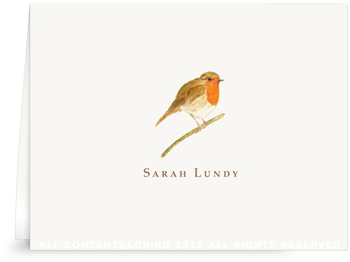 British Robin - folded note cards