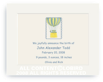 Lion Ballooning - Baby Announcements