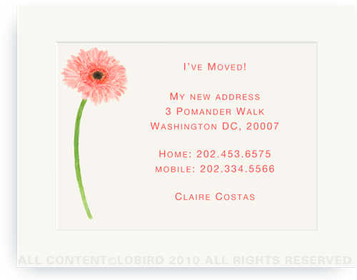 Gerber Daisy - Moving Announcements