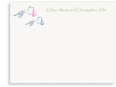 Twins-Flying Blue and Pink Storks - Flat Note cards