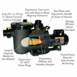Jandy Stealth Pump ----Two Speed 2 1/2 HP