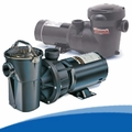 Aboveground Pool Pumps