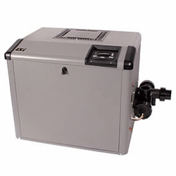 LXI 250,000 BTU HEATER-NATURAL