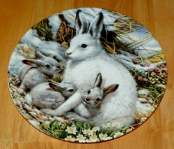 1991 Plate Arctic Hare Family Series Name Beauty of Polar Wildlife SOLD