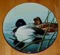 1990 Plate LESSER SCAUP Series Name Federal Duck Stamps