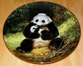 Collector Plate The Panda Last of their Kind: Endangered Species Series