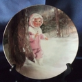 Collector Plate Donald Zolan Snowy Adventure 4th issue