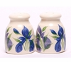 Small Iris Salt & Pepper Shakers