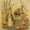 Peter Rabbit in Onion Field Cushion Cover