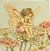 Candytuft Flower Fairy Cushion Cover