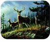 Autumn Deer Cutting Board