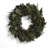 Olive Garden  Wreath - Preserved