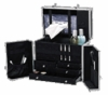 Professional Carry All Beauty Cases