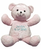 Kid's Plush Pink Bear Buddy - 20""