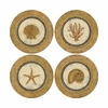 Set of 4 Glamour Shells Stone Coasters