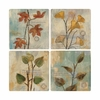 Set of  4 Poetic Branches Stone Coasters