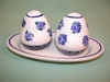 Salt & Pepper Shakers - Pattern 35