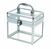 Carry All Spa Case - Girlie Clear