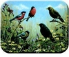 Blackbird & Bullfinch Cutting Board