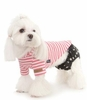 Fashion Puppy Underwear