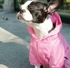 Lightweight Fashion Puppy Raincoats