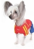 Puppy World Cup Football Strip