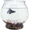 Footed Glass Fish Bowl