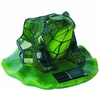 Solar Powered Green Frog Accent Light