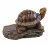 Solar Powered Turtle Accent Light