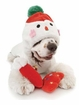 Frosty Fur Snowman Puppy Suit
