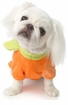 Pumpkin Puppy Dress-up Suit