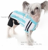 Football Shirt for Dogs - Argentina