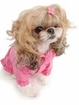 Flower Buckle Puppy Raincoat