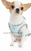 Snappy Safari Dog Shirt - Blue