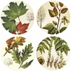 Set of 4 Autumn Leaves Stone Coasters