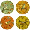 Set of 4  Birds Stone Coasters