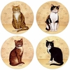 Set of 4 Country Kittens Stone Coasters