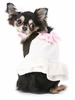 Cinderella Rockafella Dog Dress - Ivory