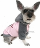 Puppy Angel Lucky 7 Jacket