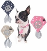 Peace Star Puppy Scarf