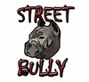 """Street Bully"" Cam & Springs Kit"