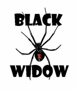 """Black Widow"" Cam"