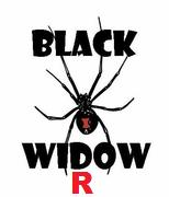 """Black Widow-R"" Cam"