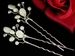 Coin & Faux Pearl Delicacy Pin 107