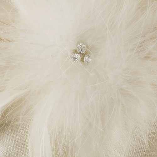 Satin Crystal Evening Bag 315 with Triple Crystals & Feather Fascinator Clip 442