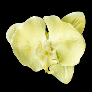 Yellow Orchid Hair Flower Clip 9945