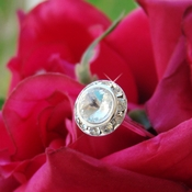 Crystal Large Pave Buttons Bouquet Jewelry