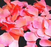 Coral  Rose Petals (100 count) #48 (Peach with Fuchsia Tips)
